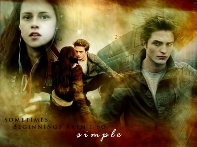 Twilight-twilight-series-1418776-80